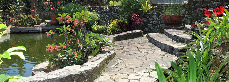 Garten , Wasser Und Grünprojekte